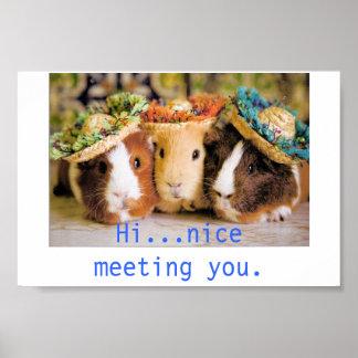 Meerschweinchen-Bekannte Poster