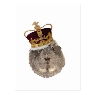 Meerschweinchen in einer Krone Postkarte