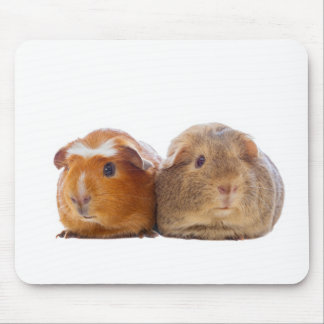 Meerschweinchen Mousepad