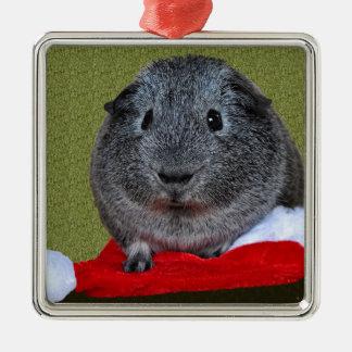 Meerschweinchen-Weihnachten Silbernes Ornament