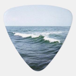 Meerwasser Plektrum