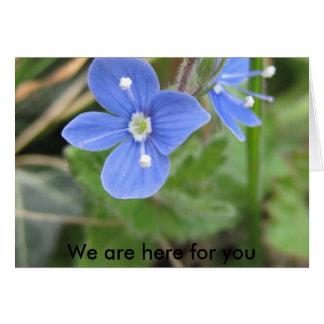 mehr Frühlings-Blumen 10 001, sind wir hier für Karte