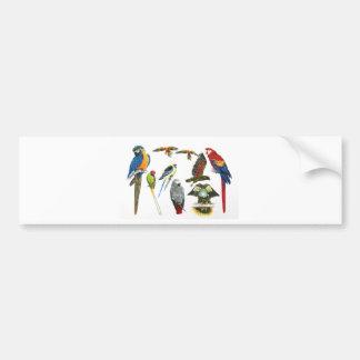 mehr und mehr Papageien für alle Ihre Geschenke Autoaufkleber