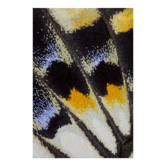 Mehrfarbenschmetterlingsflügelmuster Poster