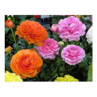 Mehrfarbige Blumen Postkarte