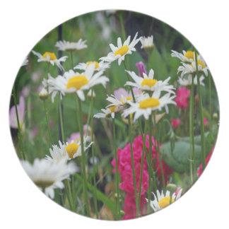 Mehrfarbige Wildblumen in einem Garten Melaminteller