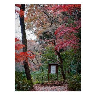 Meiji-Jingu Schrein-innerer Garten Postkarte