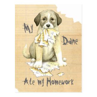 Mein anatolisches aß meine Hausaufgaben Postkarte