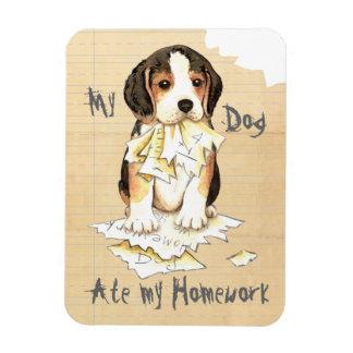Mein Beagle aß meine Hausaufgaben Magnet