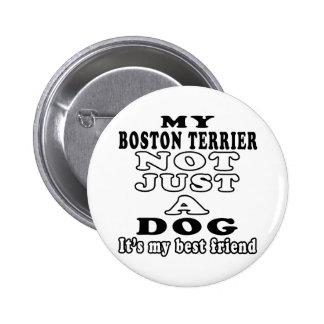 Mein Boston Terrier nicht gerade ein Hund Button