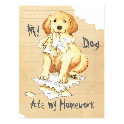 Mein Goldenes aß meine Hausaufgaben Postkarten