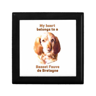 Mein Herz gehört einem Dachshund Fauve de Bretagne Schmuckschachtel