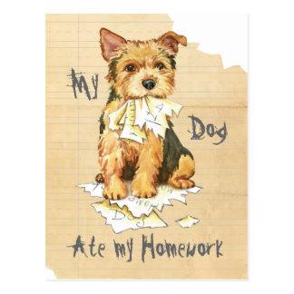 Mein Norwich-Terrier aß meine Hausaufgaben Postkarte