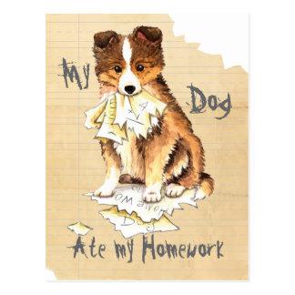 Mein Sheltie aß meine Hausaufgaben Postkarte
