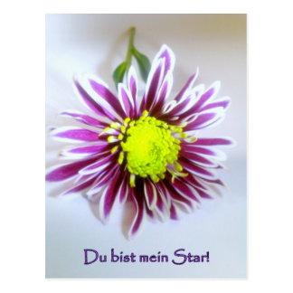 mein Star Postkarte