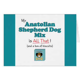 Meine anatolische Schäfer-Hundemischung ist- alle Karte