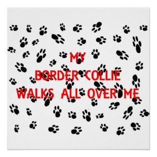 meine Border-Collie geht auf mich Poster