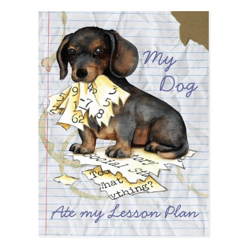 Meine Dackel aß meinen Lektions-Plan Postkarte