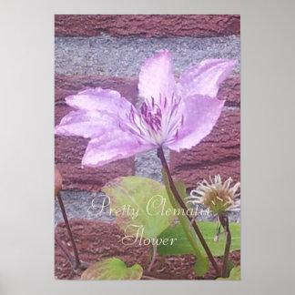 Meine Gartenlila rosa Clematis-Blume Poster