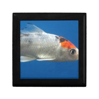 Meine Haustier Koi Fische Erinnerungskiste