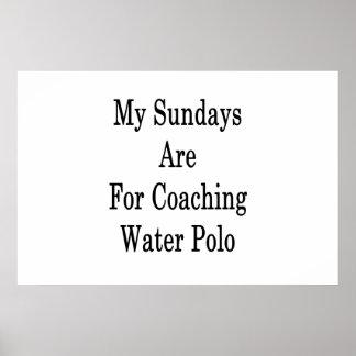 Meine Sonntage sind für coachten Wasser-Polo Poster