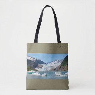 Mendenhall Gletscher panoramisch Tasche