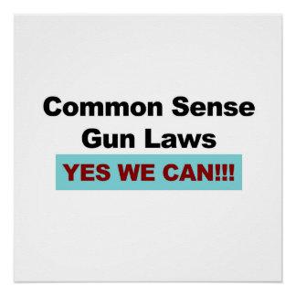 Menschenverstand-Gewehr-Gesetze - ja können wir! Poster