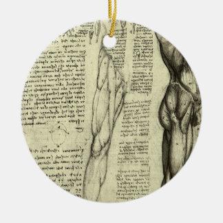 Menschliche Anatomie-männliche Muskeln durch Keramik Ornament