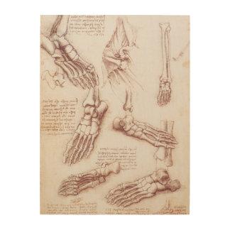 Menschliche Anatomie-Skeleton Fuß-Knochen durch da Holzdruck