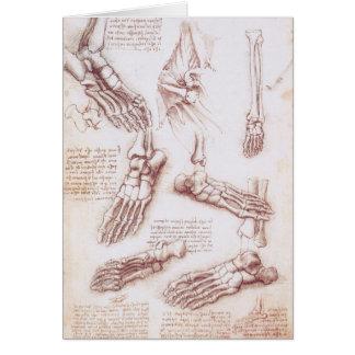 Menschliche Anatomie-Skeleton Fuß-Knochen durch da Karte