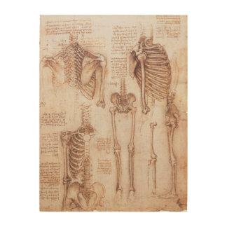 Menschliche Anatomie-Skelette durch Leonardo da Holzdruck