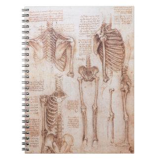 Menschliche Anatomie-Skelette durch Leonardo da Notizblock