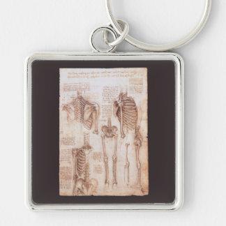 Menschliche Anatomie-Skelette durch Leonardo da Schlüsselanhänger