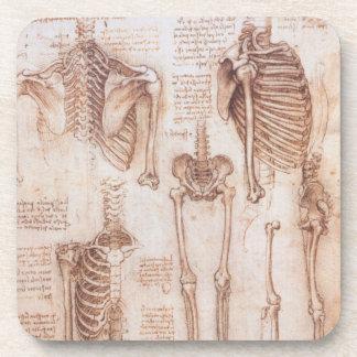 Menschliche Anatomie-Skelette durch Leonardo da Untersetzer