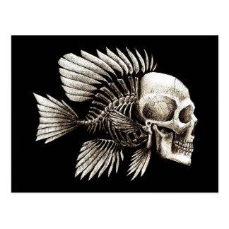 Menschliche Schädel-Fische Postkarten