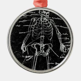 menschliche skeleton Anatomie yaie Tokyos Silbernes Ornament