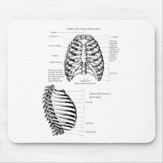 Menschlicher Brustkorb Mousepad