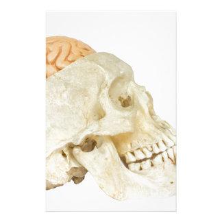 Menschlicher Schädel mit Gehirnen Briefpapier