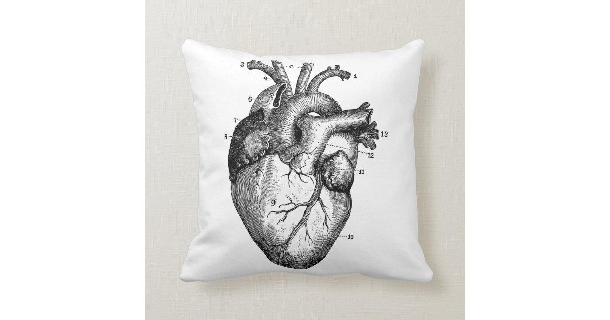 Menschliches Herz - Anatomie Kissen | Zazzle