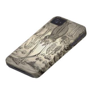 Menschliches Skelett Ca 1741 iPhone 4 Hüllen