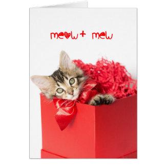 Meow + Mew Kätzchen Karte