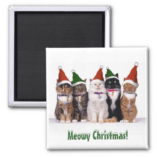 """""""Meowy Weihnachten!"""" Katzen in den Hüten Kühlschrankmagnete"""