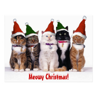 """""""Meowy Weihnachten!"""" Katzen Postkarte"""