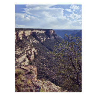 MESA Verde Colorado Postkarte