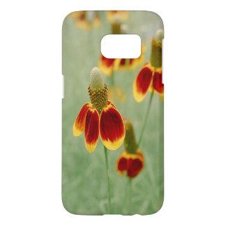 Mexikanischer Hut-Texas-Wildblumen