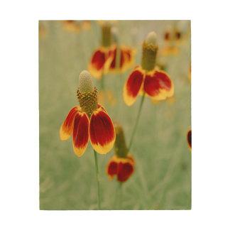 Mexikanischer Hut-Texas-Wildblumen Holzwanddeko