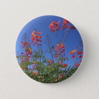 Mexikanischer Paradiesvogel Runder Button 5,7 Cm