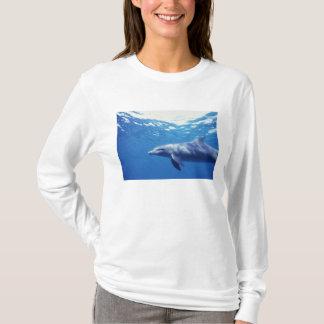 Mexiko, Cozumel. Bottlenosed Delphin, Tursiops 3 T-Shirt