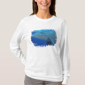 Mexiko, Cozumel. Bottlenosed Delphin, Tursiops 4 T-Shirt