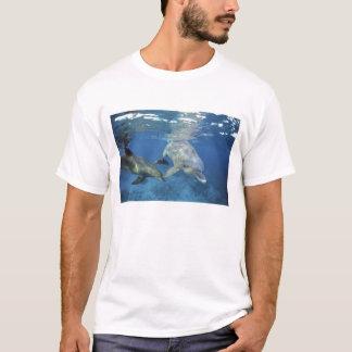 Mexiko, Cozumel. Bottlenosed Delphin, Tursiops 5 T-Shirt
